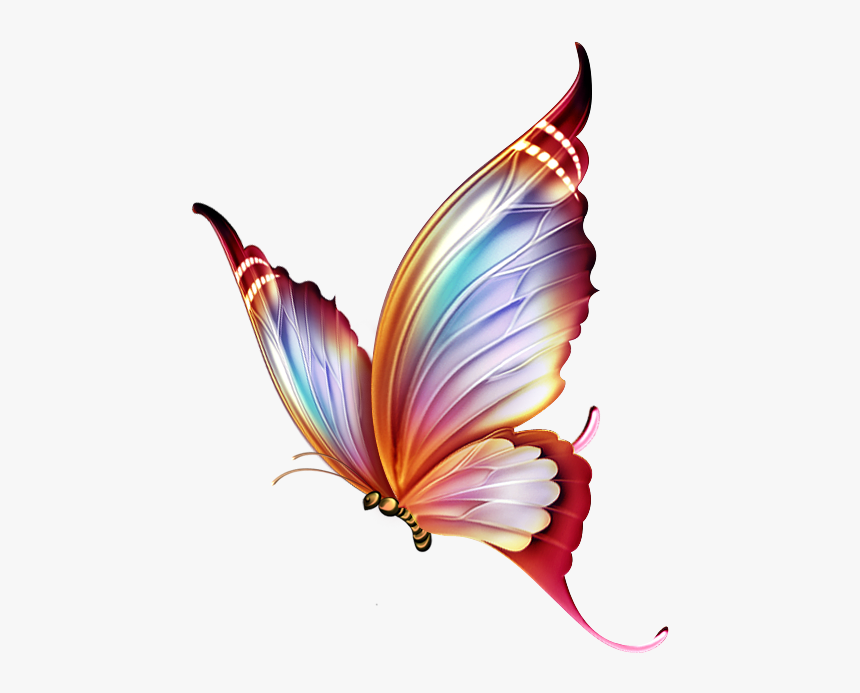 Mariposas Png - Butterfly Drawing On Colour Pencil, Transparent Png, Free Download