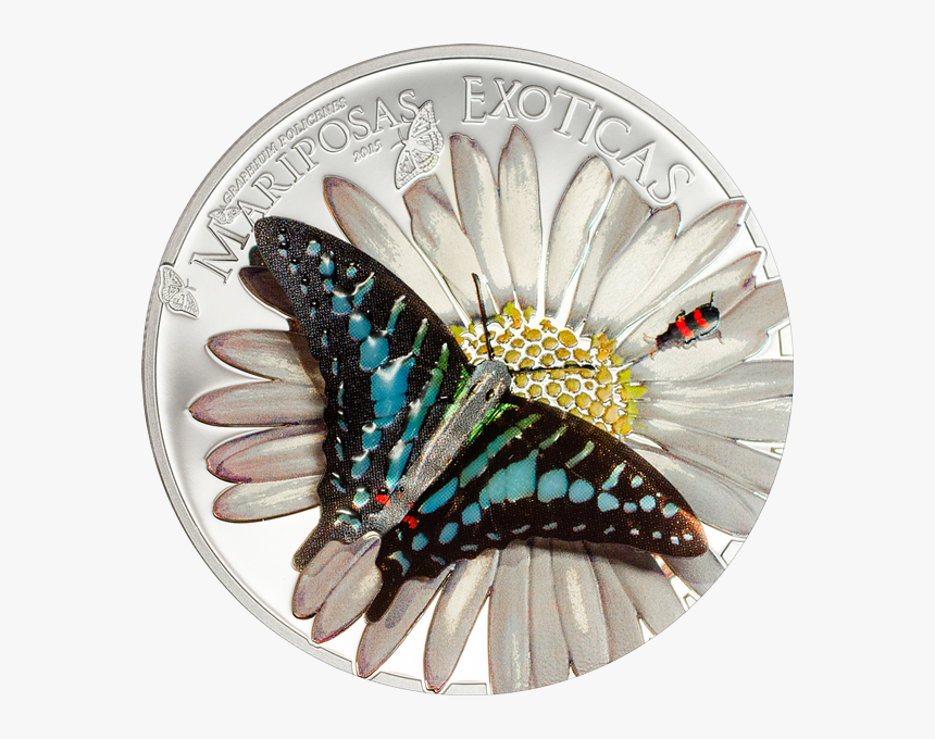 Equatorial Guinea 2015 1000 Francos Exotic Butterflies - Silver Coin, HD Png Download, Free Download