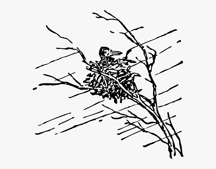 Bird In Nest Svg Clip Arts - Storm Clip Art Black And White, HD Png Download, Free Download