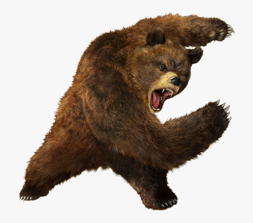 Vertebrate,brown Bear,grizzly Figure,kodiak Bear,fur,yawn - Bear Png, Transparent Png, Free Download
