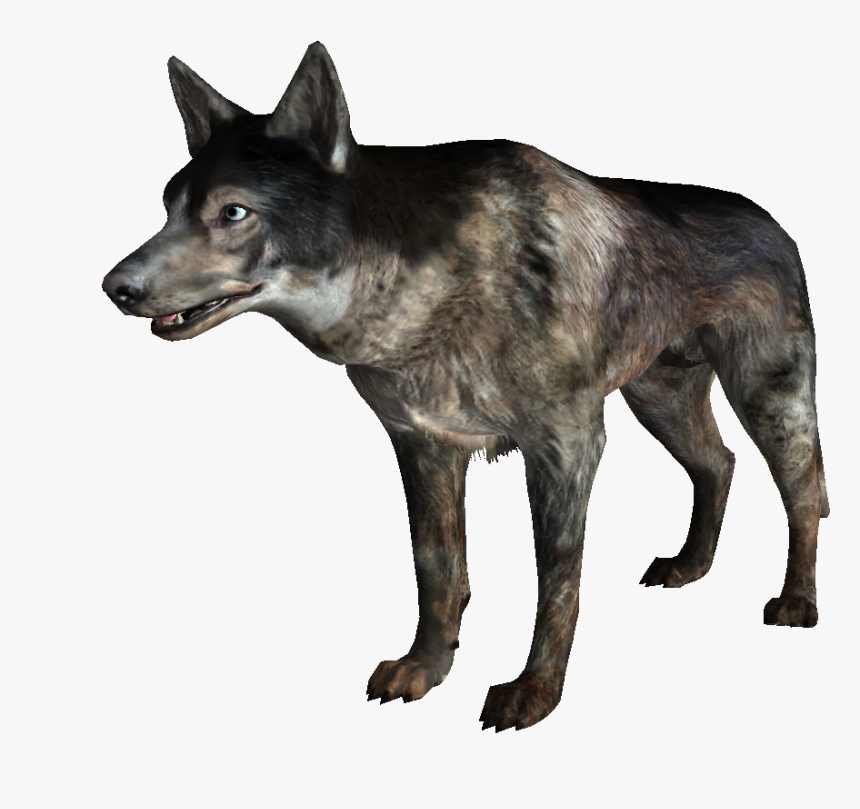 Wild Dogs Png Images Download - Savage Dog Fallout, Transparent Png, Free Download