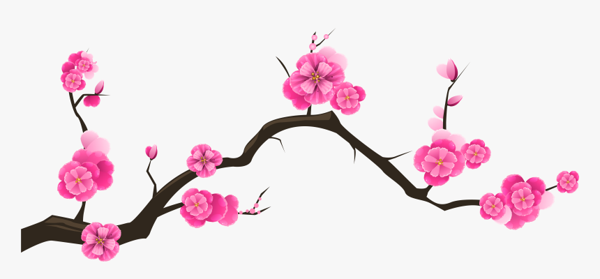 Cherry Blossom Branch Stock Huge Freebie Download, HD Png Download, Free Download