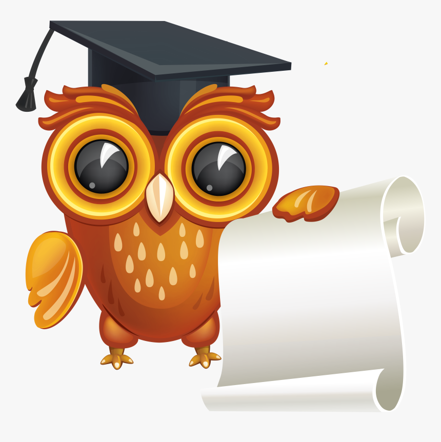 High School Diploma Graduation Ceremony Clip Art - Owl With Graduation Hat Clipart Png, Transparent Png, Free Download