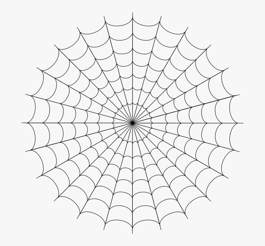 Spider Web, Cobweb, Spider, Web, Creepy, Halloween - White Spider Man Web, HD Png Download, Free Download
