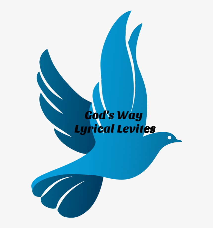 Dove Icon Png, Transparent Png, Free Download
