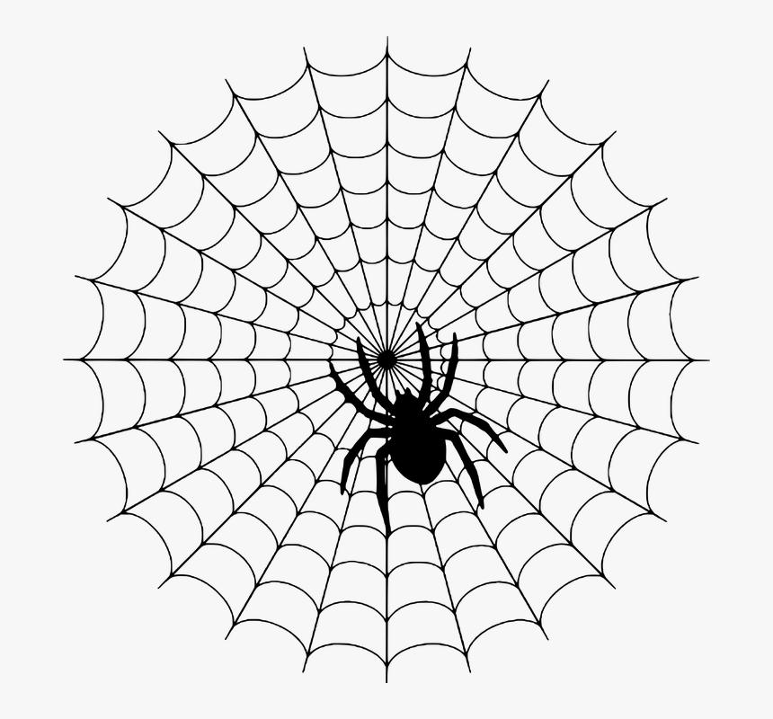 Spider, Web, Silhouette, Halloween, Spiderweb, Cobweb - Charlottes Web Spider Web, HD Png Download, Free Download