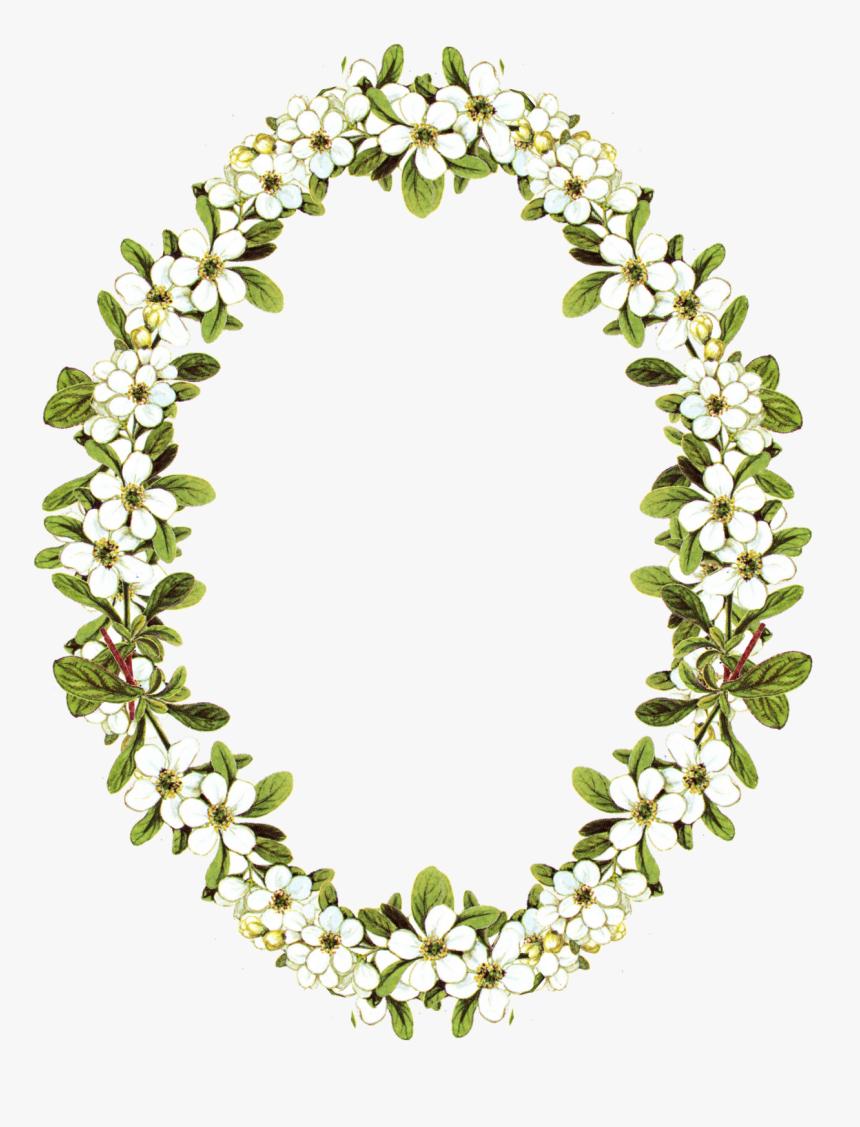 Floral Clipart Oval Frame Vintage Flower Frame Png Transparent