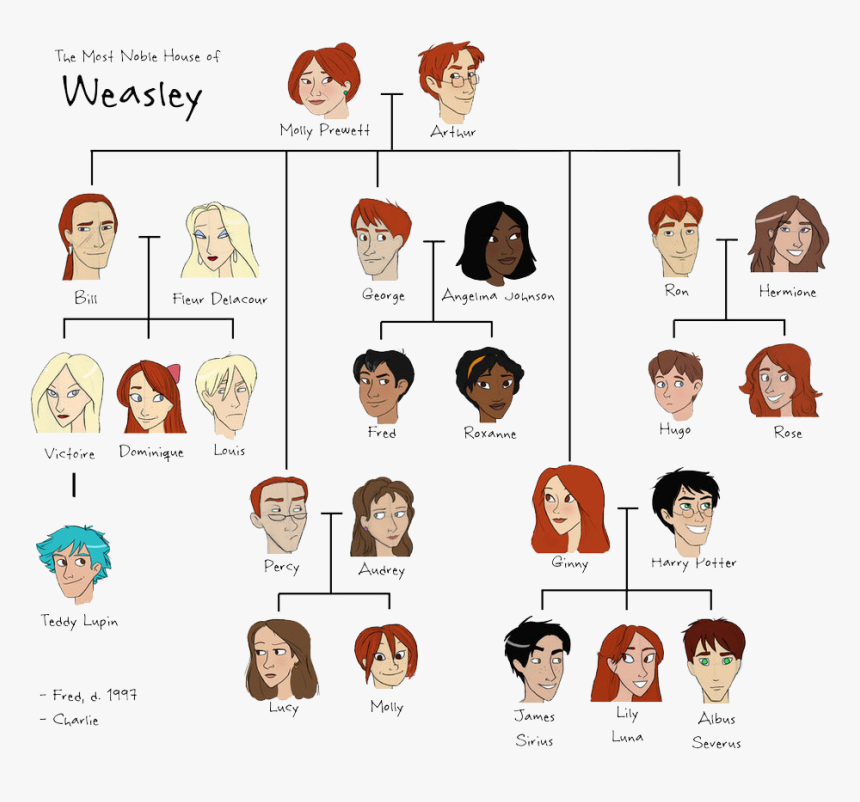 Weasley Family Tree, HD Png Download, Free Download