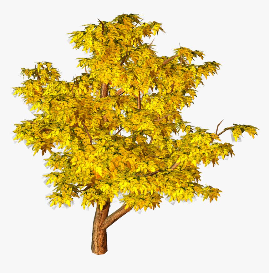 Transparent Autumn Tree Clipart - Png Autumn Tree Transparent, Png Download, Free Download
