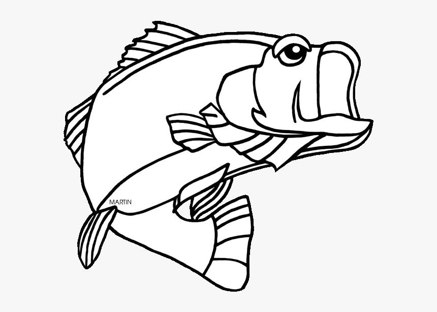 Download Clip Art Fish - Largemouth Bass Clipart Png Transparent Png  (#3775347) - PinClipart