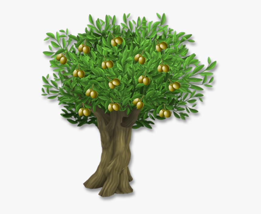 Olive Leaf Tree Clip Art Olive Tree With Olives Png Transparent Png Kindpng