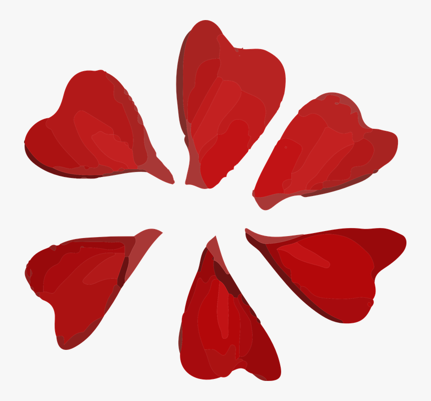 Flower, Petals, Red - Petal Red Png, Transparent Png, Free Download