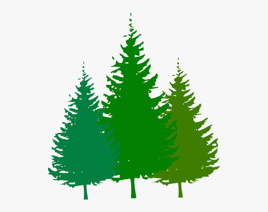 Free Animated Cliparts Download - Pine Tree Clipart Png, Transparent Png, Free Download