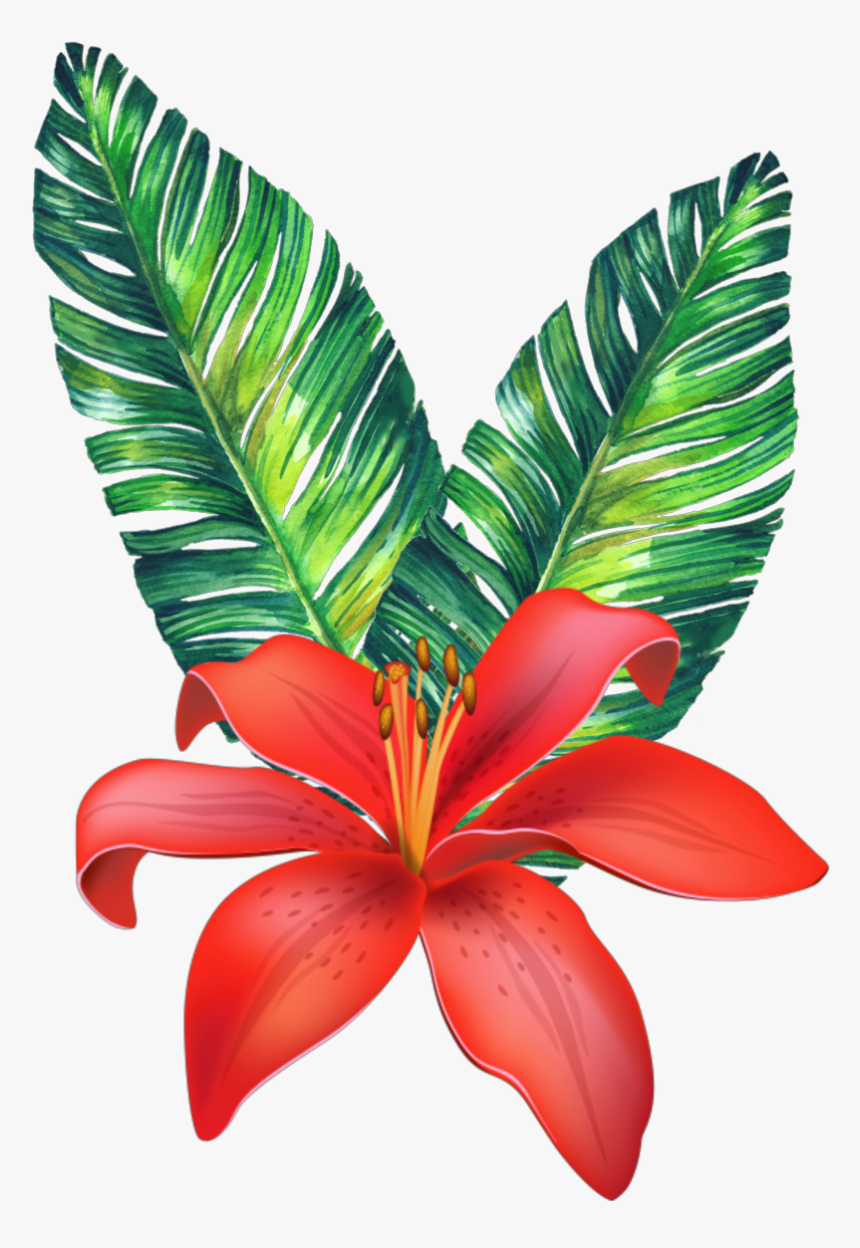 #flower #tropical #freetoedit - Vector Tropical Flowers Png, Transparent Png, Free Download