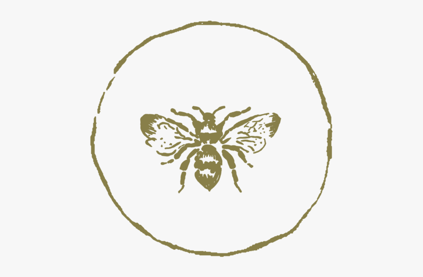 Icon-bee - Illustration, HD Png Download, Free Download