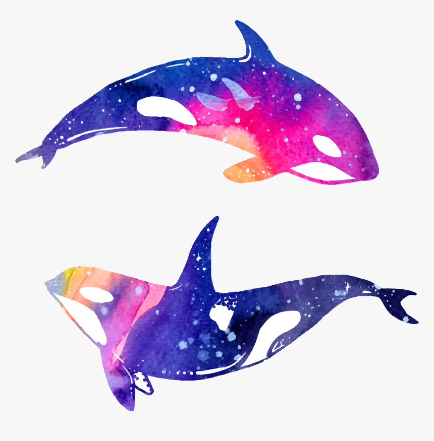 Dolphin Clipart Png - Dolphins Clipart, Transparent Png, Free Download