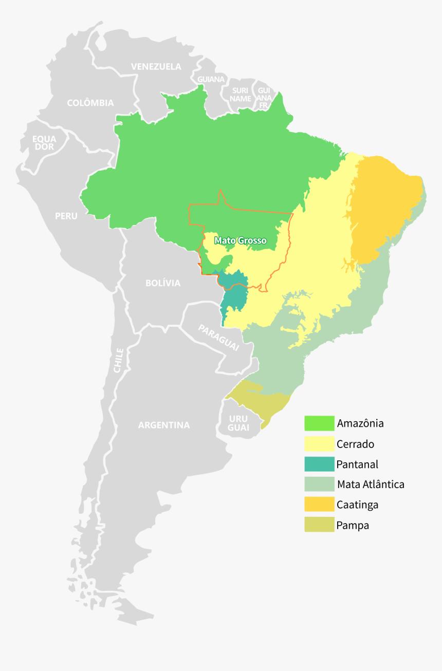 Picture of: Mato Grosso Brazil South America Brazil South America Map Png Transparent Png Kindpng