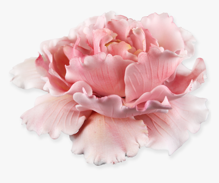 Peony Plunger Cutter, HD Png Download, Free Download