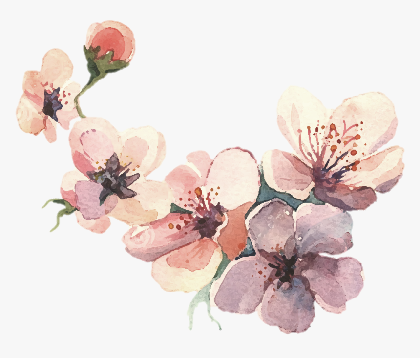Watercolor Painting Water Color Svg Library Library , Flower