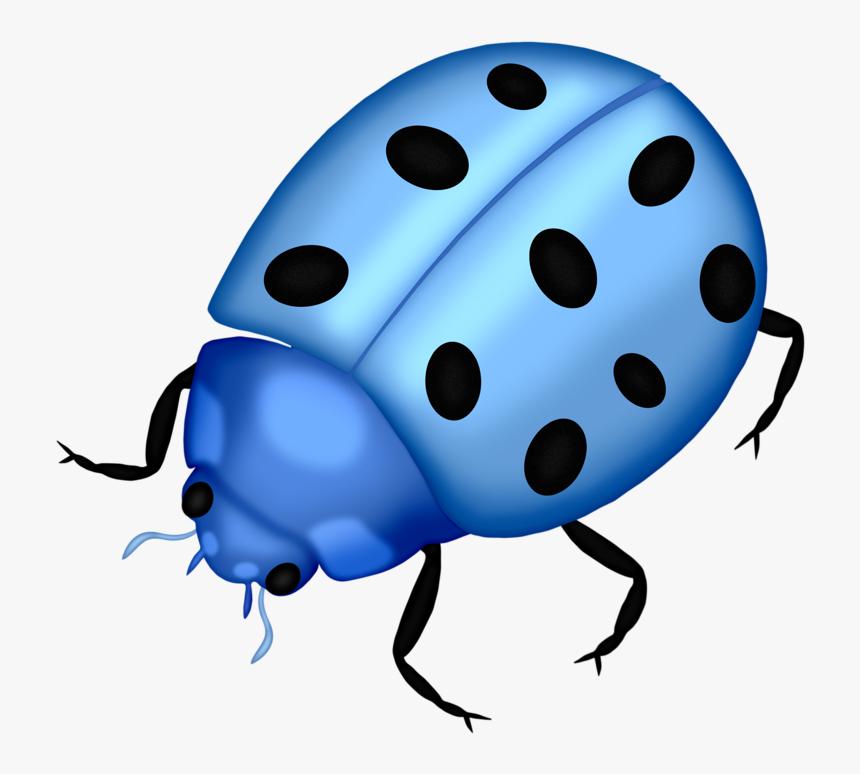 Bug Png Clip Art Lady Bugs And - Blue Ladybug Transparent Background, Png Download, Free Download