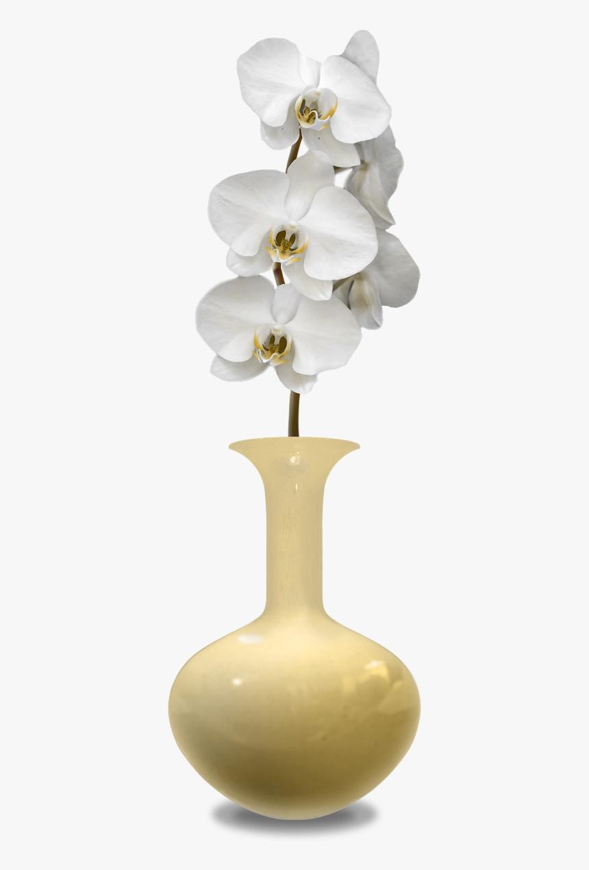 Transparent Flower In Vase Png, Png Download, Free Download