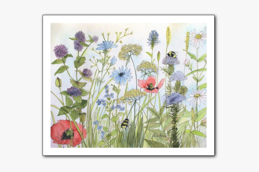 Picture - Watercolor Paintings Of Gardens Flowers, HD Png Download, Free Download