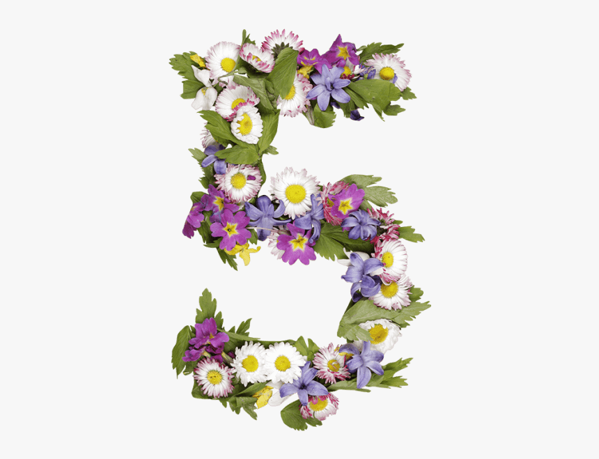 Wildflowers Font - Flower Number Png, Transparent Png, Free Download
