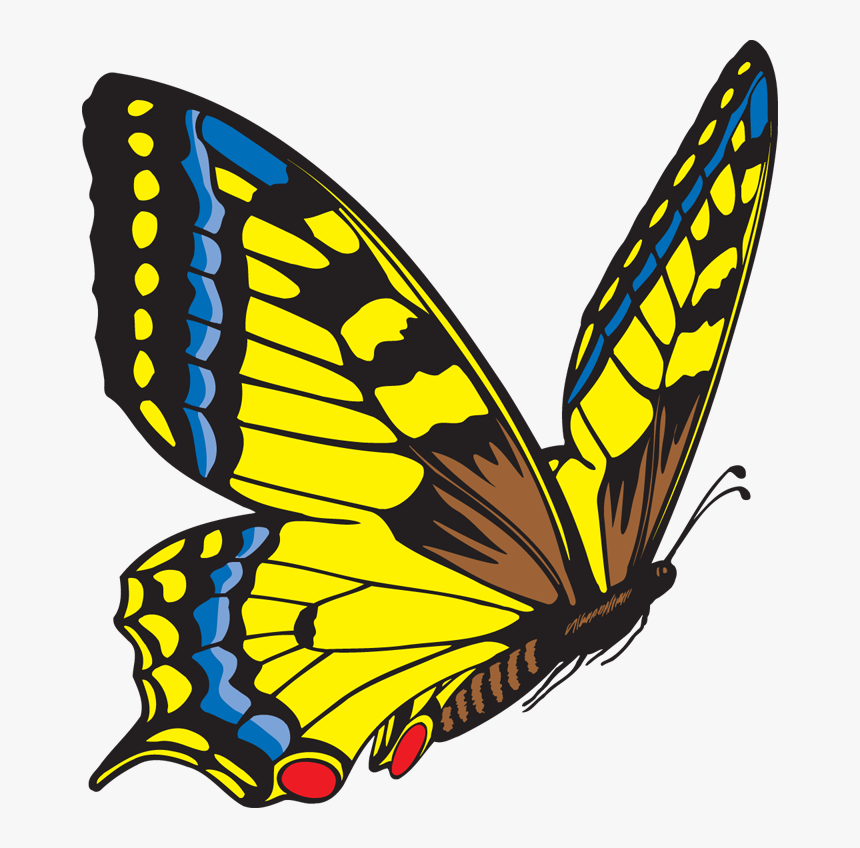 Butterfly Clipart Free Images - Flying Butterfly Clip Art, HD Png Download, Free Download