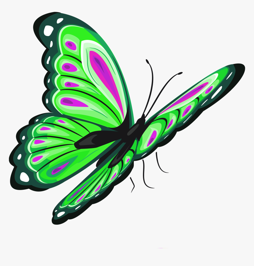 Butterfly Clip Art - Transparent Butterfly Clipart, HD Png Download, Free Download