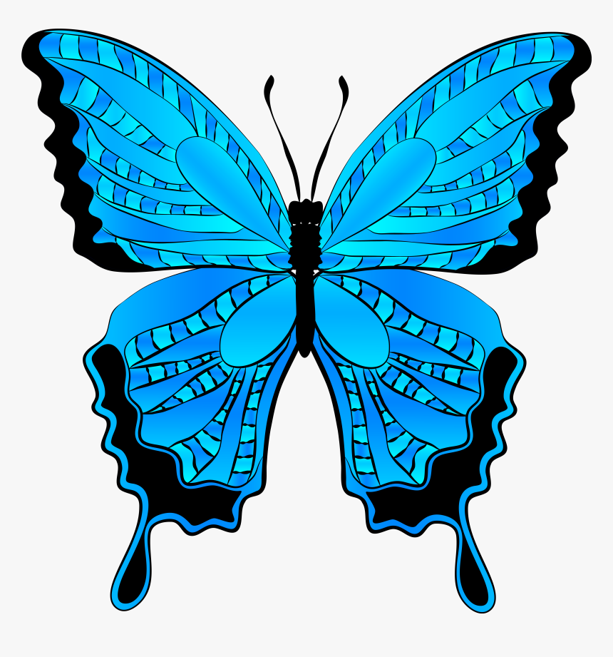 Free Butterfly Clip Art Graphics Free Clipart Images - Blue Butterfly Clip Art Butterfly, HD Png Download, Free Download