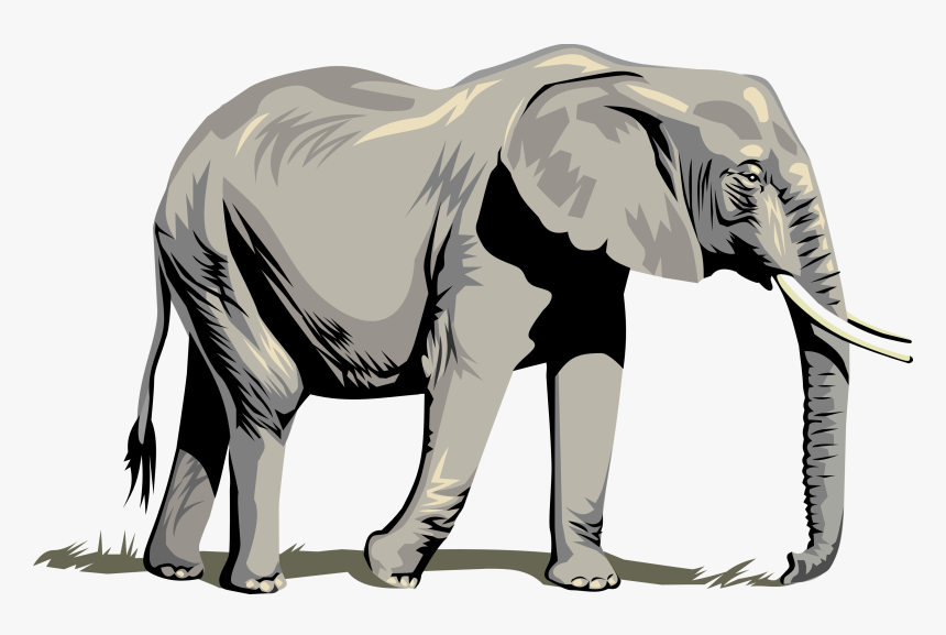 Side Drawing Baby Elephant Elephant Vector Hd Png Download Kindpng Elephant rabbit drawing child, elephant, elephant with pink umbrella illustration, painted, animals drawing, cartoon elephant, comics, mammal, cat like mammal png. side drawing baby elephant elephant