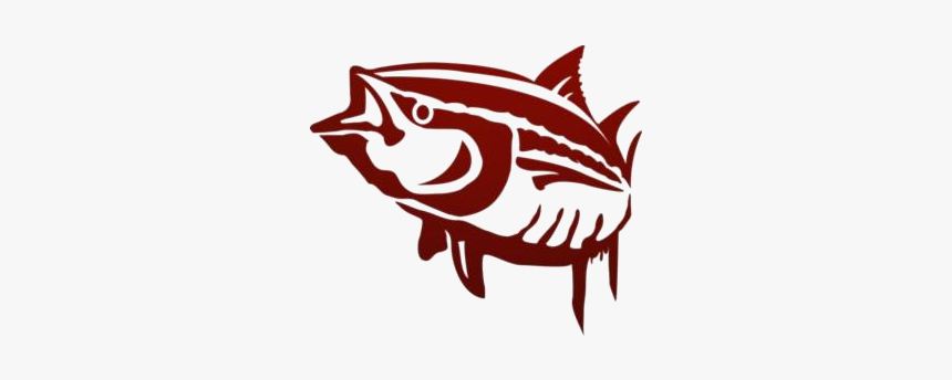 Sea Animals Png Hd Images, Stickers, Vectors - Tuna, Transparent Png, Free Download