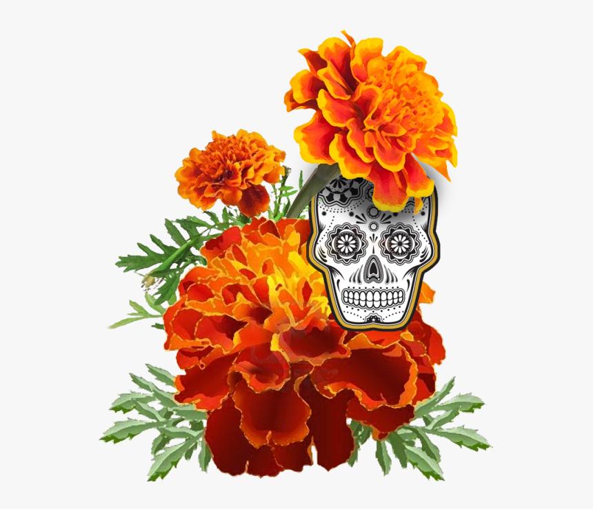 Marigold-skull - Dia De Los Muertos Marigold Drawing, HD Png Download, Free Download