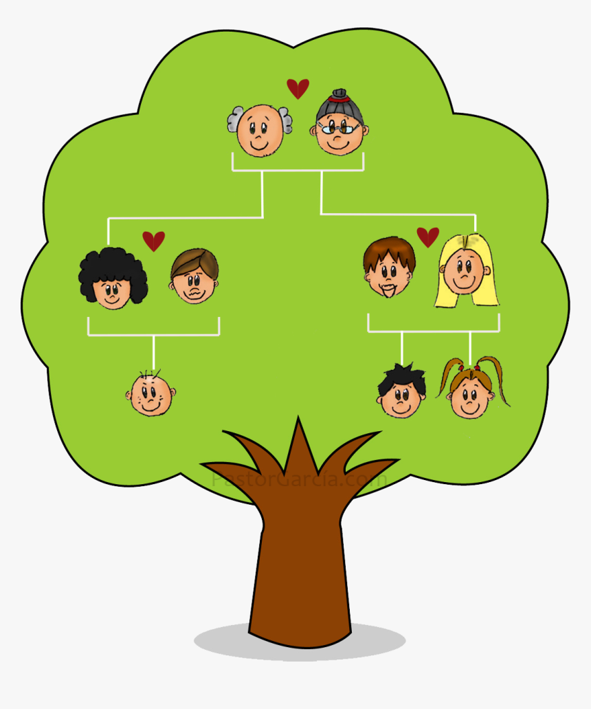 Nuclear Tree Genealogy Family Child Free Download Png - Family Tree For Nuclear Family, Transparent Png, Free Download