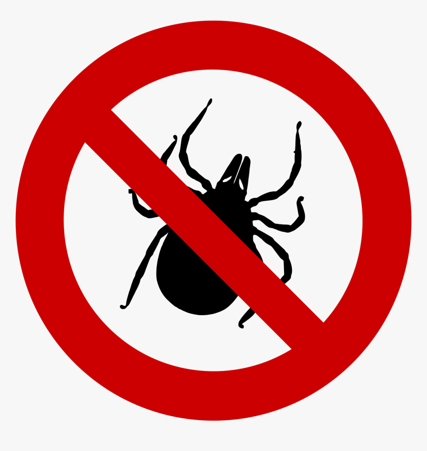 Tick, Tick-plage, Sting, Insect, Plage, Ban, Protection - No Left Turn Traffic Sign, HD Png Download, Free Download