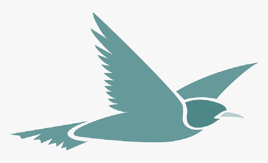 Flying Bird Cartoon Transparent Background , Png Download - Transparent Background Bird Flying Clipart, Png Download, Free Download