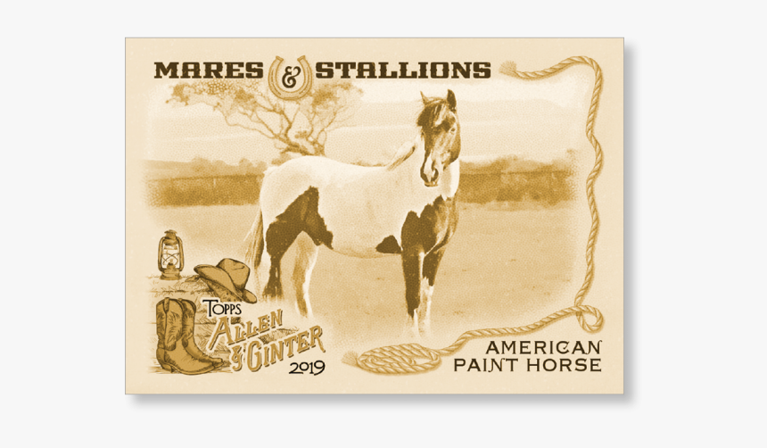 American Paint Horse 2019 Topps Allen & Ginter Oversized - Aadi Lagna Patrika, HD Png Download, Free Download