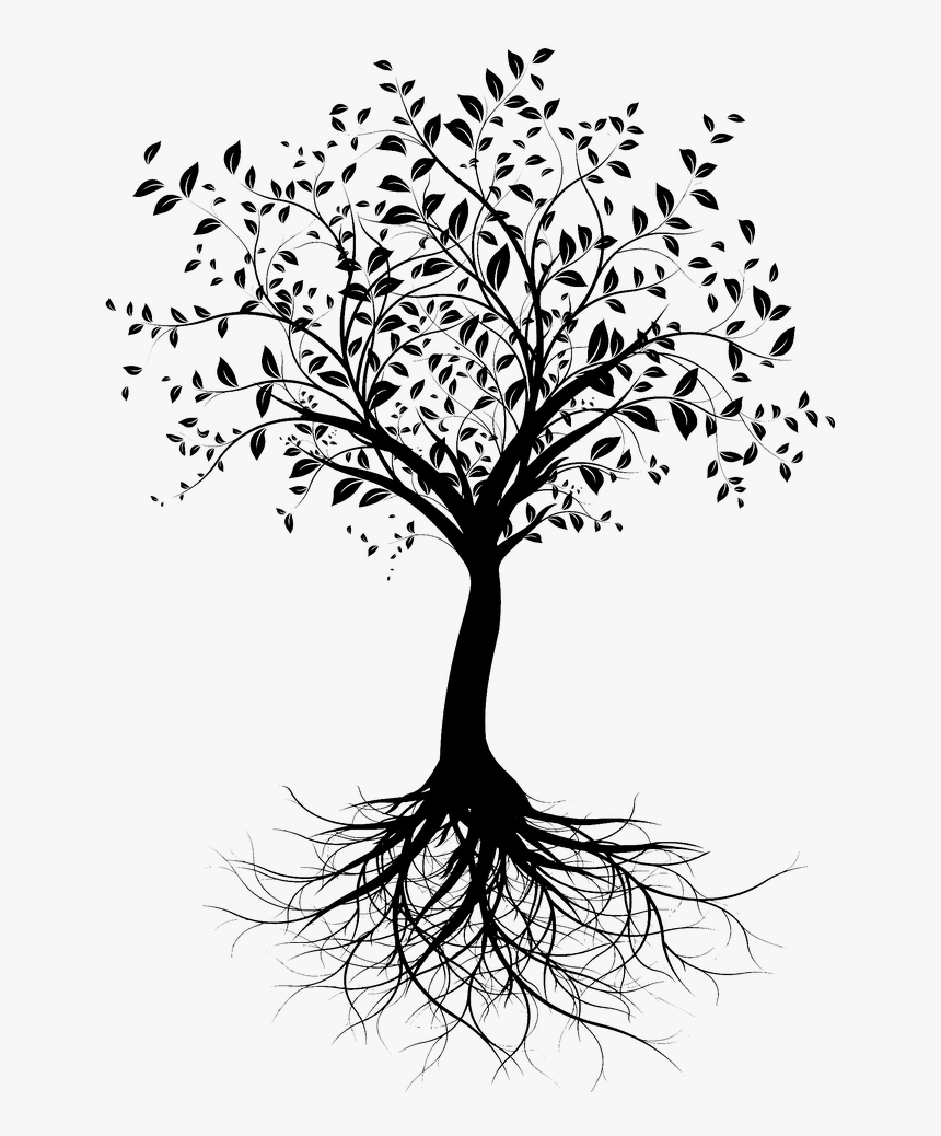 Tree Silhouette Png Images Pngegg