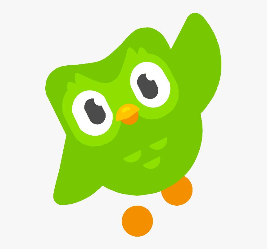 duo #duolingo #owl #bird #freetoedit - Duolingo Bird Png, Transparent Png -  kindpng