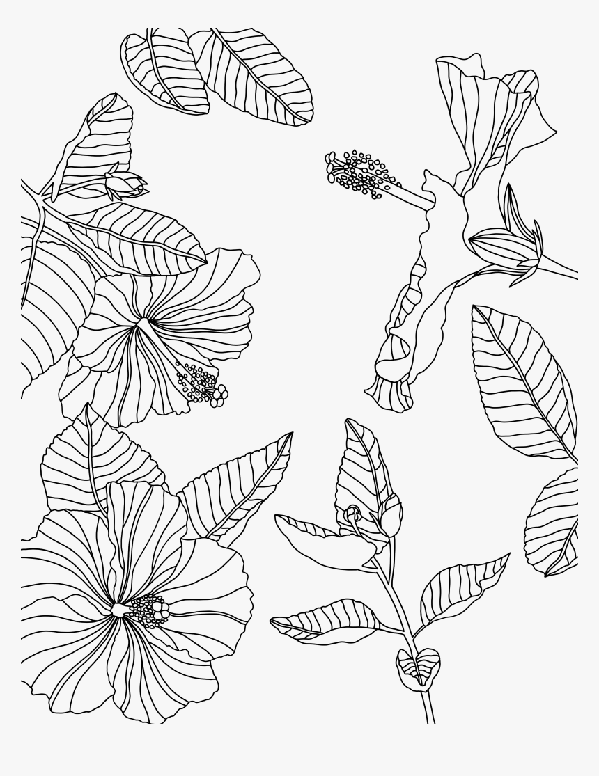 Transparent Tumblr Png Coloring Pages - Coloring Page Procreate