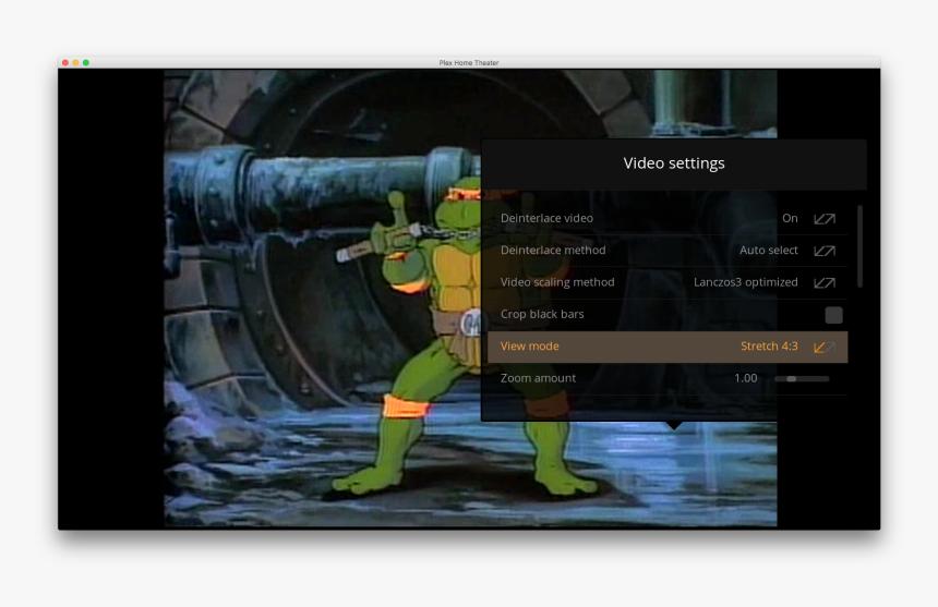 C2a - Scale - Ninja Turtles 80s Cartoon, HD Png Download, Free Download