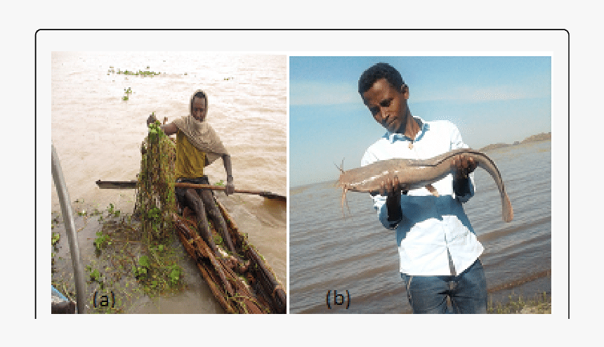 Fisherman, HD Png Download, Free Download