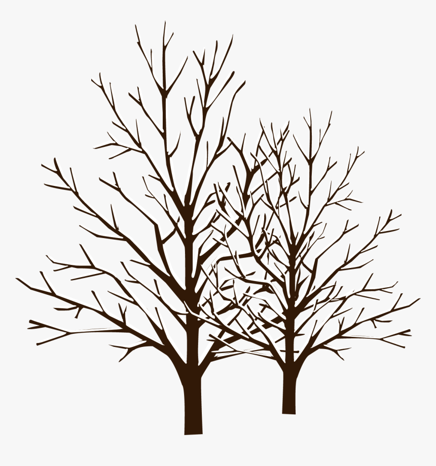 Snow Winter Tree - Winter Tree Vector Png, Transparent Png, Free Download