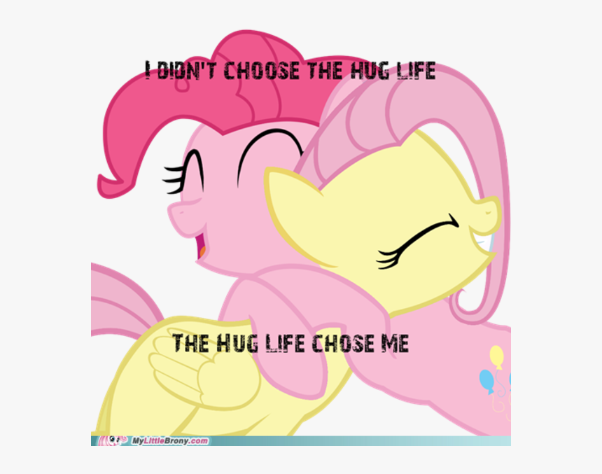 "Dion""t Choose The Hug Life The Hug Life Chose Me Mylittle - Rainbow Dash And Fluttershy, HD Png Download, Free Download"
