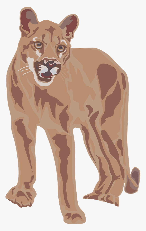 Cartoon Mountain Lion Transparent, HD Png Download, Free Download