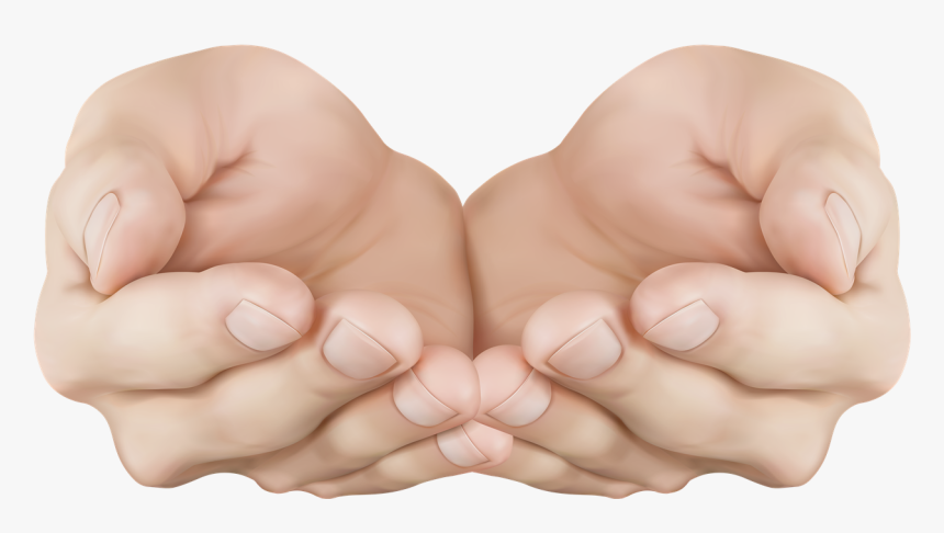 Hand Png Image Free Download - Cupped Hand Transparent, Png Download, Free Download