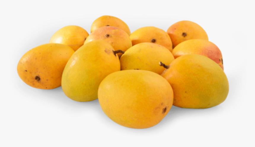 Transparent Mango Clipart - Ratnagiri Alphonso Mango Png, Png Download, Free Download