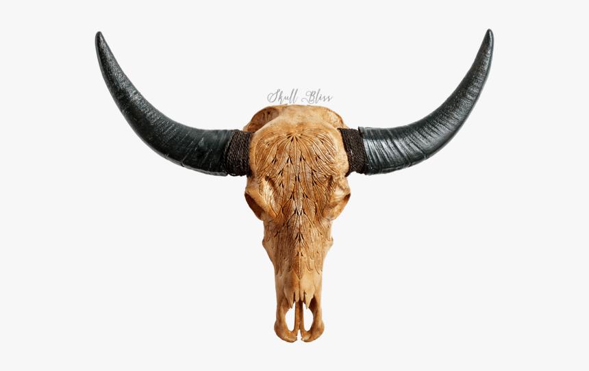 Bull, HD Png Download, Free Download