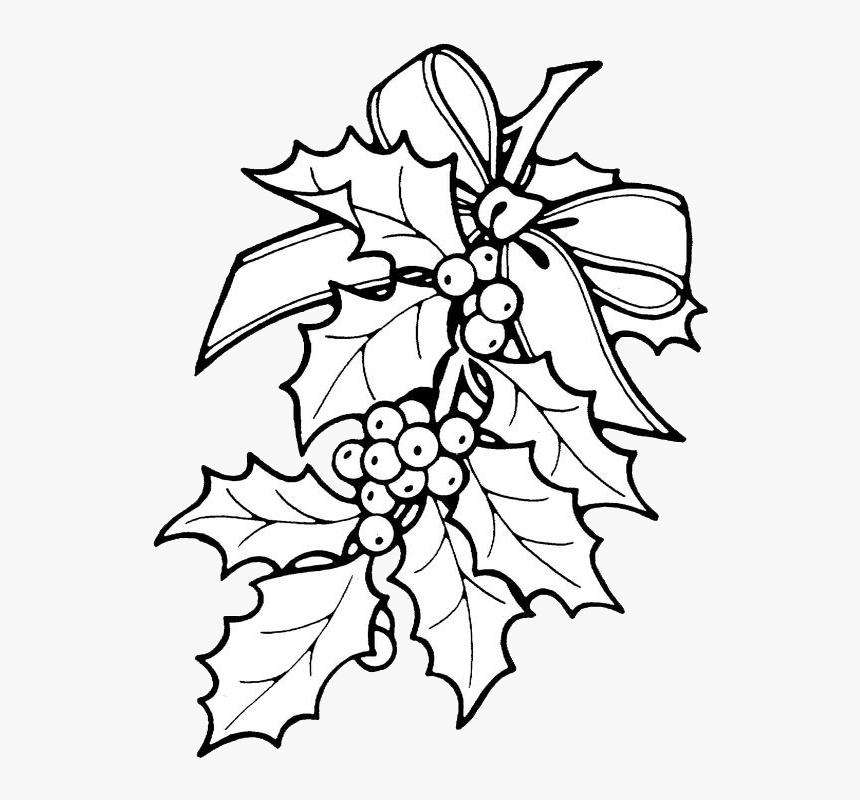 Printable Christmas Ornament Patterns Christmas Holly - Christmas Holly Coloring Pages, HD Png Download, Free Download