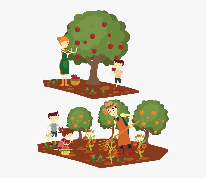 Cartoon Farmer Home - Apple Tree Picking Cartoon, HD Png Download, Free Download